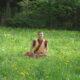 Kelsang Shenyen beim Meditieren auf einer Wiese